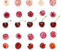 Colourful bright pattern made of flowers and cherries Royalty Free Stock Photo