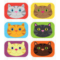 Colourful cat buttons an illustration of six Royalty Free Stock Images