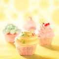 Colourful cupcakes delicious in close up Stock Images