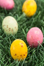 Colourful easter eggs nestled grass Royalty Free Stock Photos