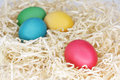 Colourful Easter Eggs in Straw Stock Images