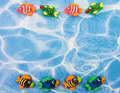 Colourful Fish Border Royalty Free Stock Photo