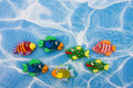Colourful Fish Border Stock Image