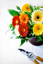 Colourful flower arrangement of bright vivd red orange and yellow gerbera daisies in a vase on a white wooden background with a Royalty Free Stock Photos