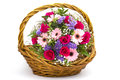 Colourful flowers in a basket on white Stock Images