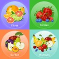 Colourful fruits banners set vector illustration Royalty Free Stock Photo