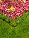 Colourful Garden Flower Bed Royalty Free Stock Photo