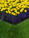 Colourful garden flower bed close up of a and lawn Royalty Free Stock Photography