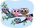 A colourful owl family