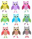 Colourful owls Stock Photo