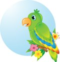 Colourful parrot sitting o a wooden perch Stock Photo