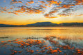 Colourful sunrise at lake moogerah in queensland beautifully rich coloured australia Stock Photos