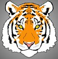 Colourful Tiger Face Digital Painting- PNG Raster Design