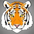 Colourful Tiger Face Digital P...