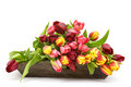 Colourful tulips on a wooden tray Stock Photos
