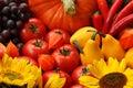 Colours of autumn Royalty Free Stock Photo