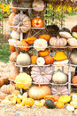 Colours Pumpkins Stock Photos