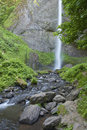 Columbia River Gorge waterfall and greens. Royalty Free Stock Photo