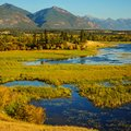The Columbia Wetlands in Fall or Autumn Royalty Free Stock Photo