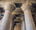 Columns in an ancient egyptian temple Royalty Free Stock Photo