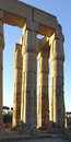 Columns at Luxor Temple in Egypt Stock Photos