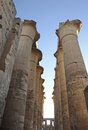 Columns at luxor temple in egypt architectural detail of the ancient africa Royalty Free Stock Images