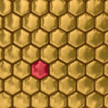 Comb honey. 3D image. Texture. Stock Image