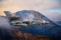 Combat aircraft Tornado Royalty Free Stock Photo
