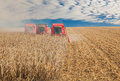 Combine in a field at the harvest autumn Royalty Free Stock Photography