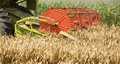 Combine harvester in action on wheat field, close-up shot of combine header. Royalty Free Stock Photo