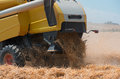 Combine harvester from close up during harvest . Harvesting of wheat. Royalty Free Stock Photo