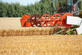 Combine harvester in the harvest in the wheat field Stock Image