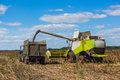 Combine harvester overloads sunflower seeds in a tractor trailer on the field Royalty Free Stock Photo