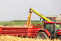 Combine harvester unloading wheat grains into tractor trailer. Royalty Free Stock Photo