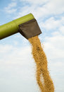 Combine harvester unloads soybean seeds after harvest Royalty Free Stock Photo