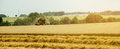 Combine harvester on a wheat field with a blue sky Royalty Free Stock Photos
