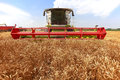 Combine harvester in a wheat field new working Royalty Free Stock Photos