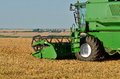 Combine harvester at work green on the wheat field Royalty Free Stock Photos