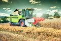 Combine harvester working on wheat field Royalty Free Stock Photo