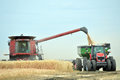 Combine and tractor harvesting wheat Royalty Free Stock Photo
