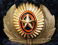 Combined Military Russian cockade Stock Images