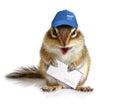 Comical chipmunk postman, on white Royalty Free Stock Photo