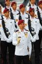 Commando guard-of-honor Stock Photography