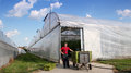 Commercial Greenhouse Exterior Royalty Free Stock Photo