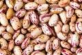 Common beans Royalty Free Stock Photo