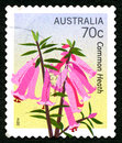 Common Heath Plant Australian Postage Stamp