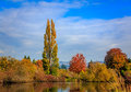 Commonwealth lake park colorful tree leaves by the in beaverton oregon Stock Photography