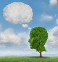 Communication growth with a tree shaped as a human head with a blank word bubble made of clouds as a business concept of growing Royalty Free Stock Photos
