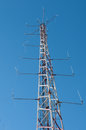 Communication tower in a forest under blue Stock Image