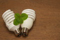 Compact fluorescent light bulb green concept innovation energy saving Stock Photography